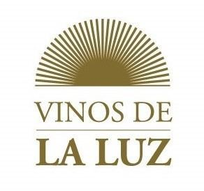 Iluminado Vinos de La Luz Malbec 2015, fue elegido como el mejor vino argentino