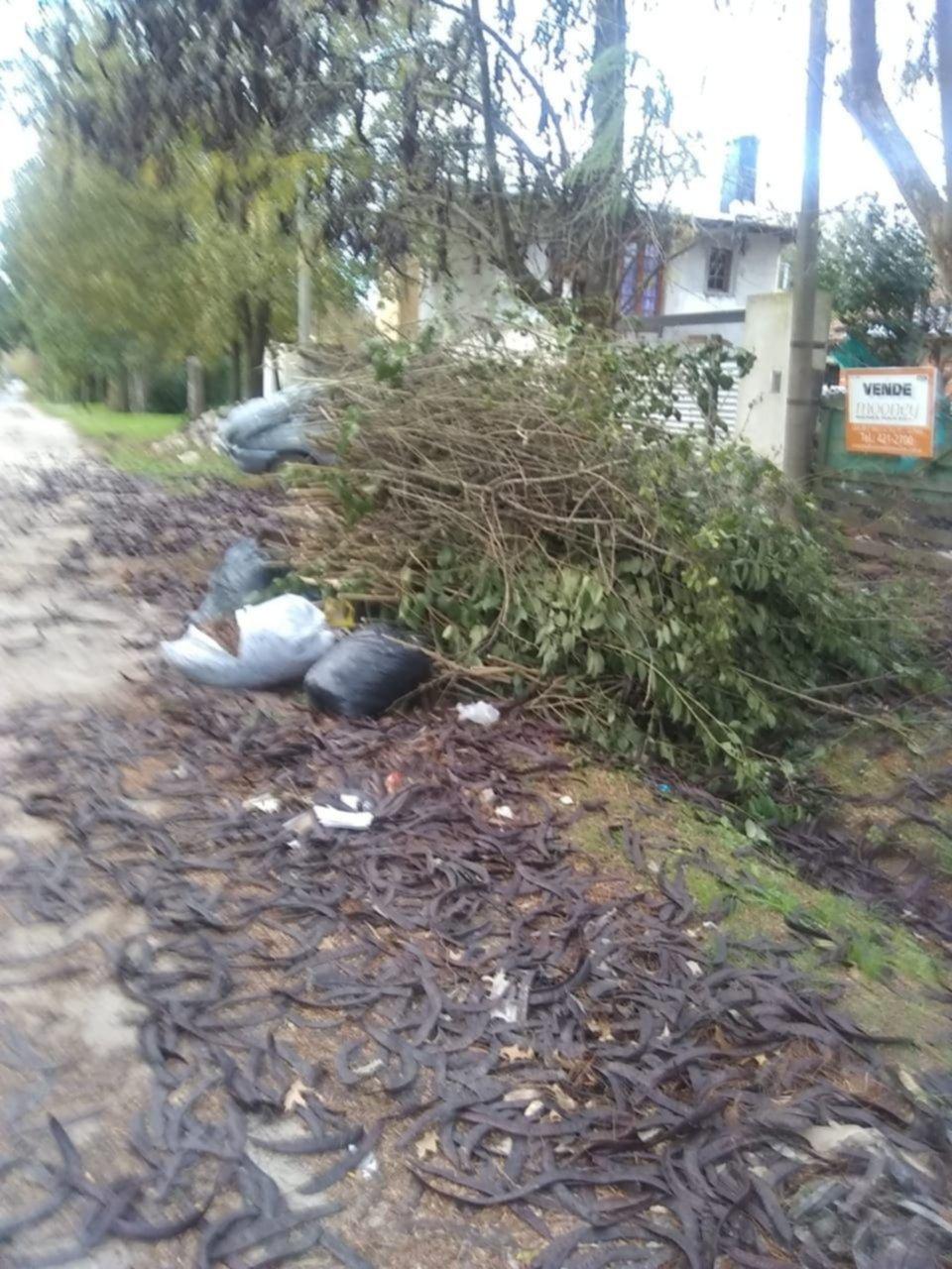 Preocupa la formación y quema de montañas de basura en Villa Elisa
