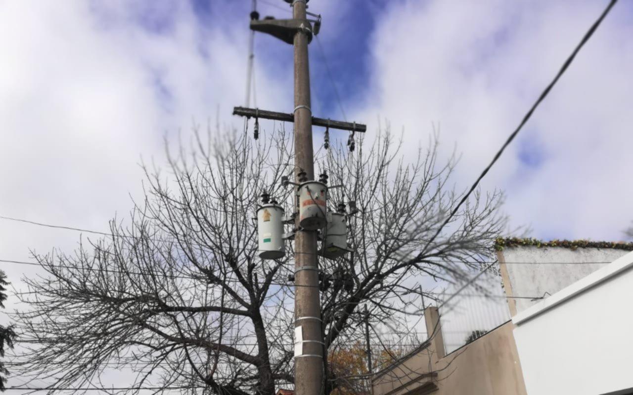 Temor en Los Hornos por un árbol que roza los transformadores de elecrticidad