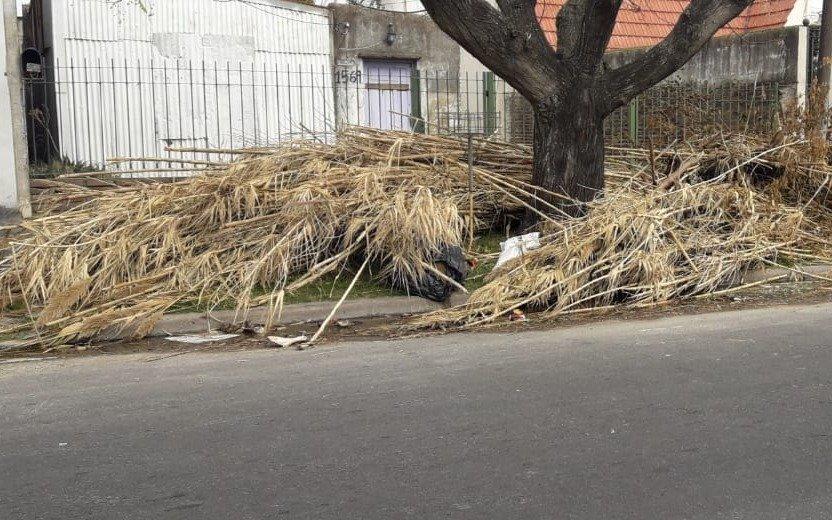 Las ramas en la vereda ya ocultan el frente de una casa en Los Hornos
