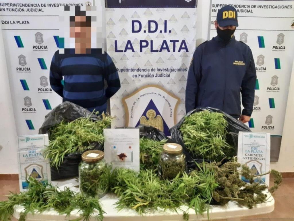 """En Berisso, incautan más de 8 kilos de """"cogollo"""" de marihuana"""