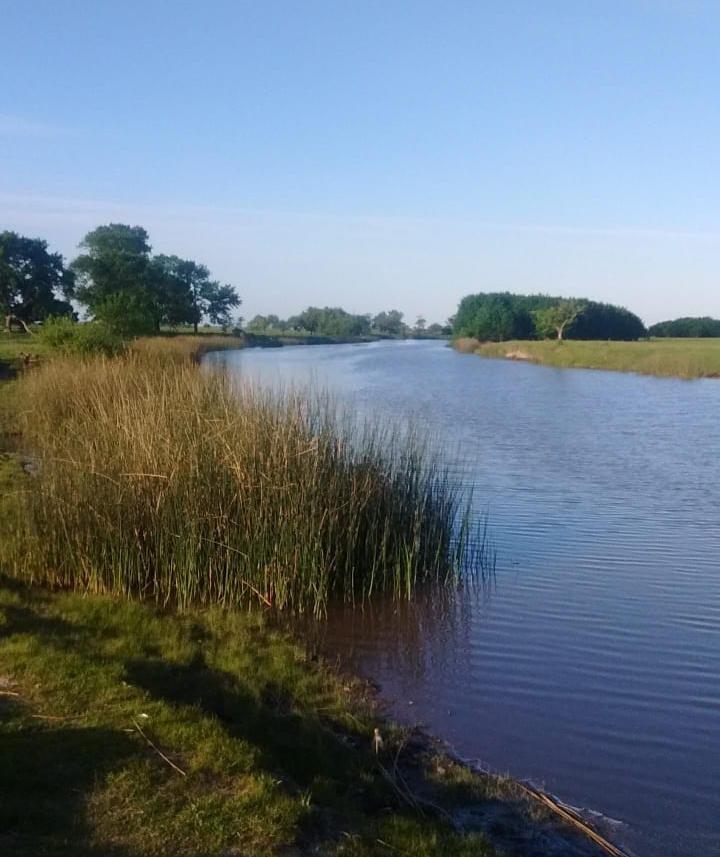 Prohíben construcciones privadas para proteger los humedales de El Pescado