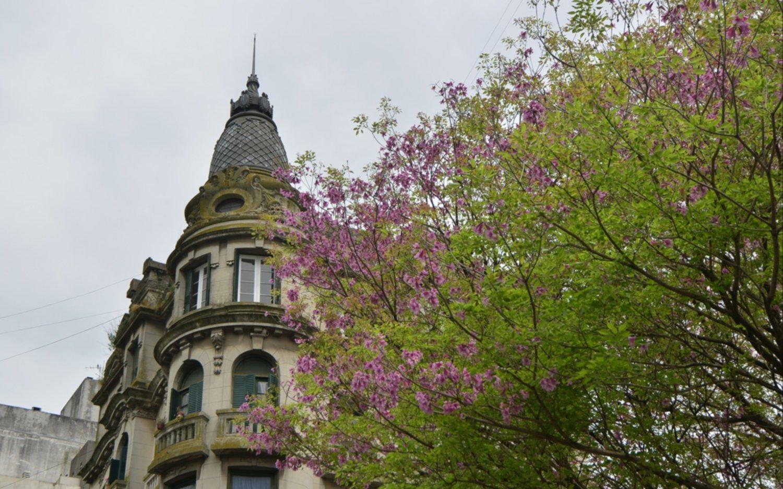 Domingo fresco, húmedo y con cielo nuboso en La Plata