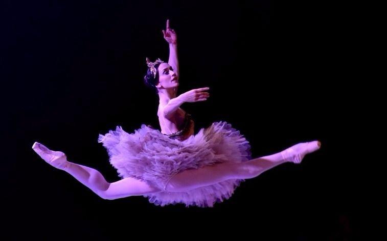 Marianela Núñez bailará en San Martín por cuarto año consecutivo