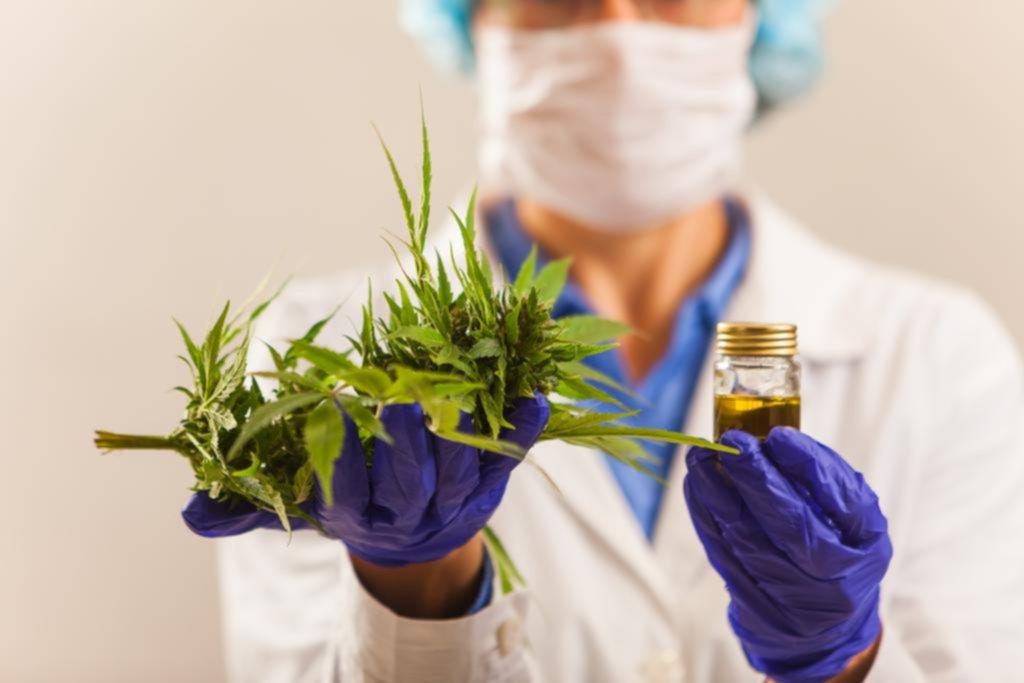 Legalizar el autocultivo, el principal pedido al hablar de cannabis medicinal