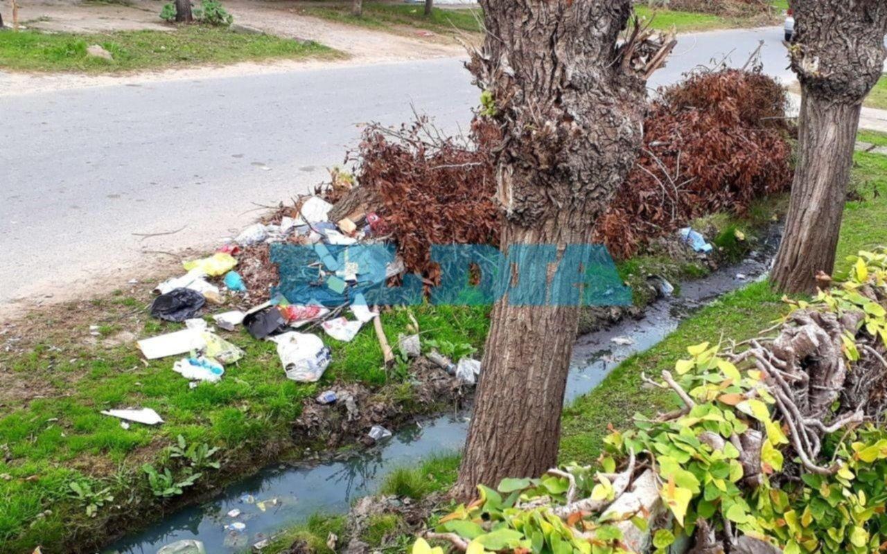 """Mientras crece una montaña de desechos, pide un cartel de """"no arrojar basura"""""""