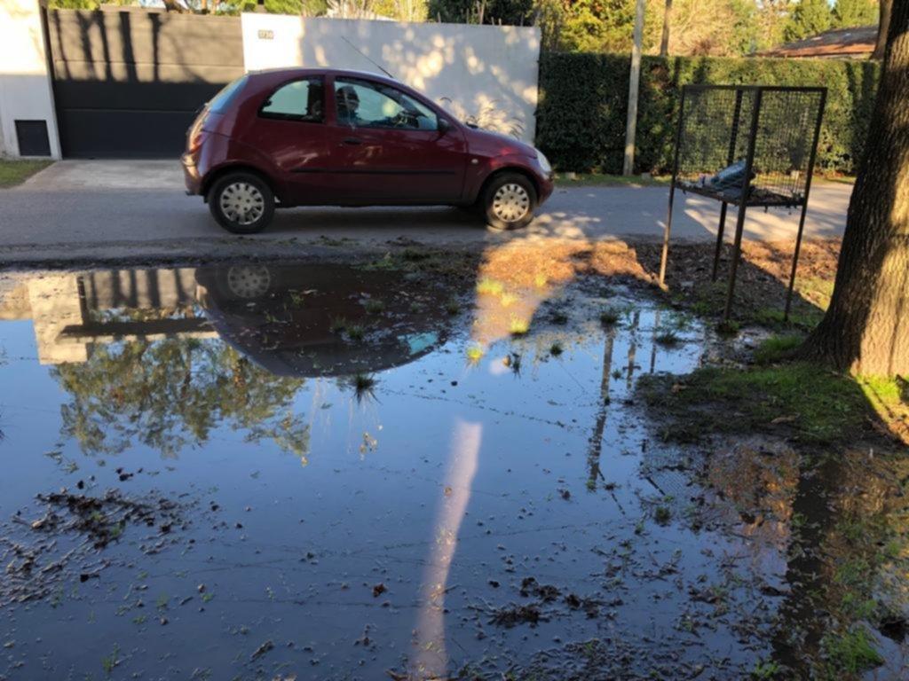 Una pérdida de agua de la vereda ya inundó todo el terreno de un vecino