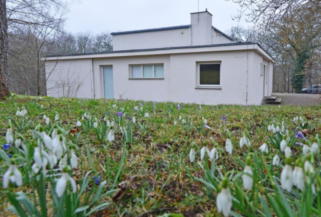 """La """"Haus am Horn"""", fotografiada en Weimar, que fue añadida, entre otros edificios diseñados por la Escuela de Arquitectos de la Bauhaus de Weimar y Dessau, a la lista de sitios del Patrimonio Mundial por el Comité de la Organización de las Naciones Unidas para la Educación, la Ciencia y la Cultura (UNESCO) durante su reunión en Cracovia, Polonia, el 9 de julio de 2017. EFE/EPA/MARTIN SCHUTT"""