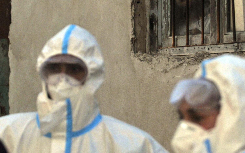 Coronavirus: en La Plata hay 194 contagios y cinco nuevos fallecidos en el país