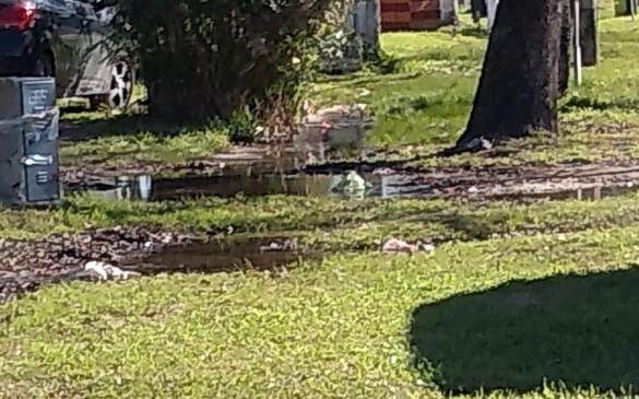 De no creer: en Gonnet todavía reclaman por una pérdida de agua que ya lleva 4 años