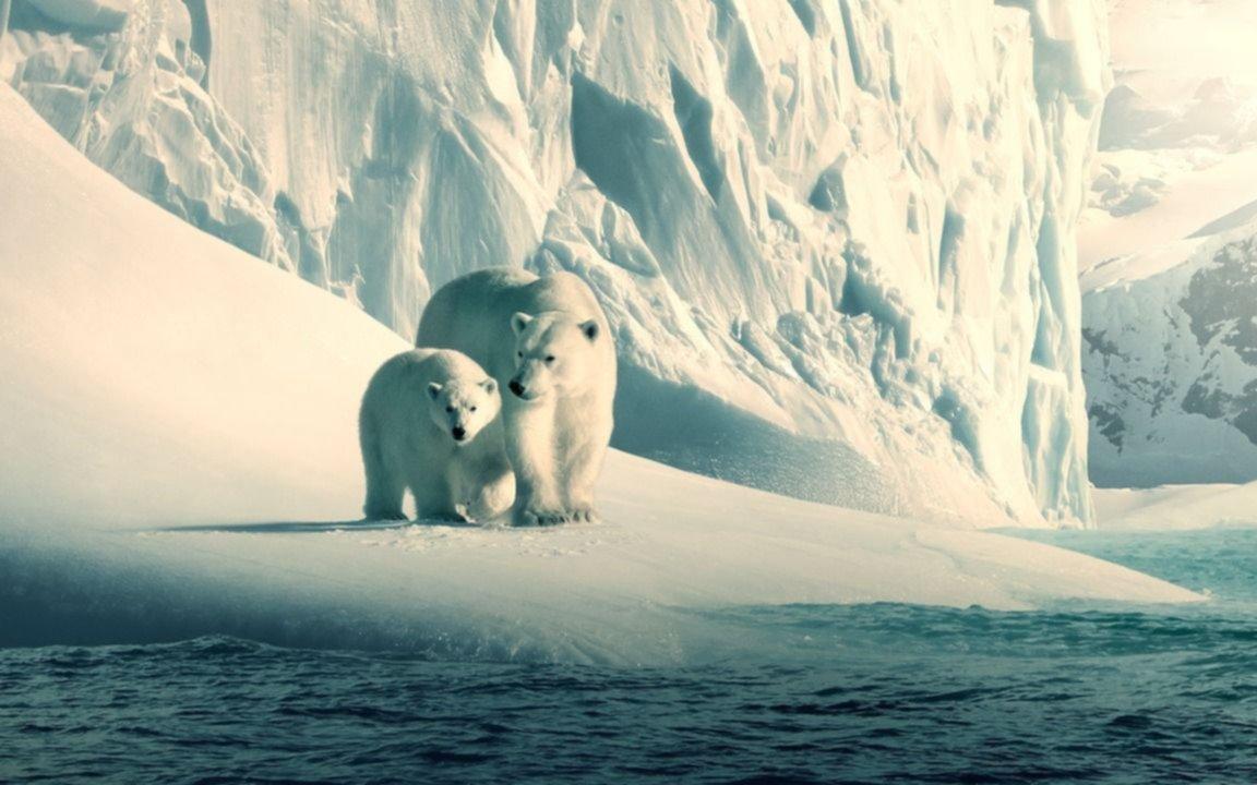Día Mundial del Medio Ambiente: 10 series y documentales para ver
