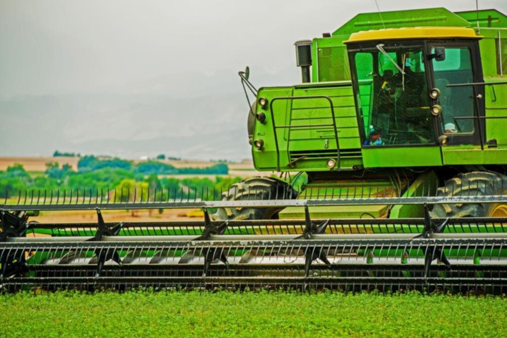 Cayó un 10 % la producción de soja y hubo récord de exportación de trigo y maíz