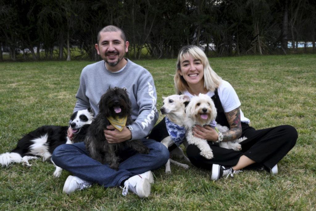 Bien acompañados en cuarentena: las adopciones de perros crecieron 200% en pandemia