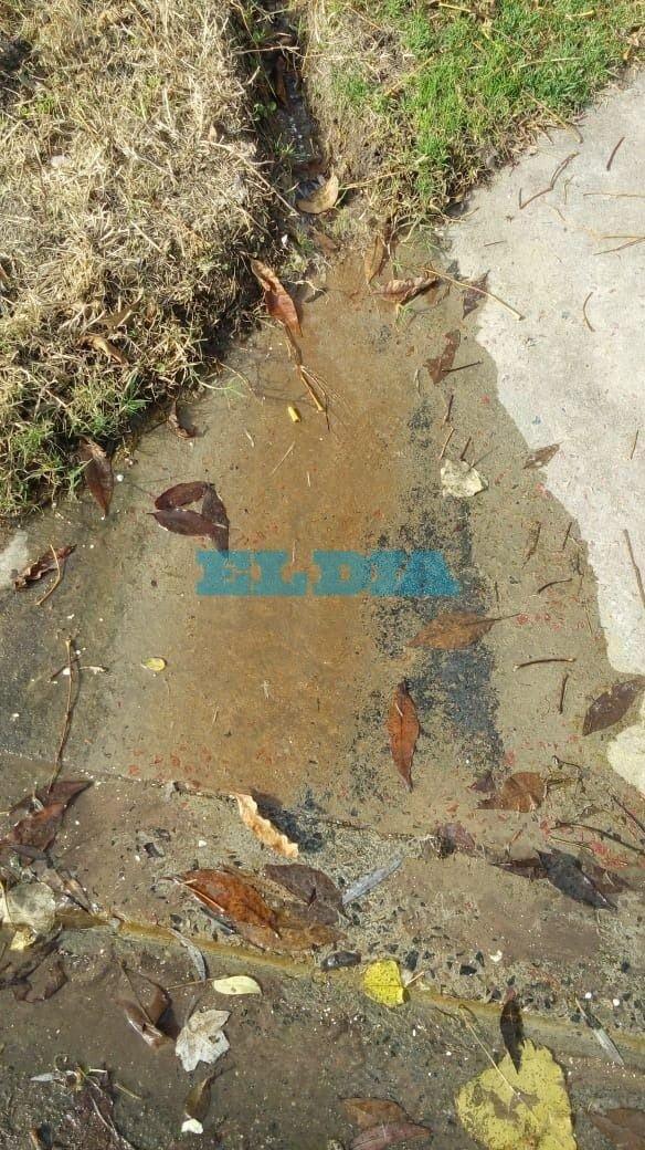 Sin solución a una pérdida de agua que data de hace un año en San Carlos