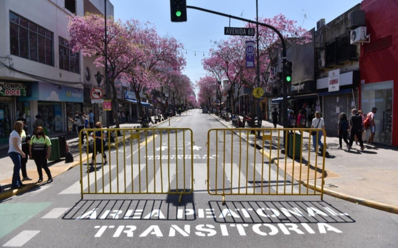 Previa del Día del Padre: peatonalizarán calle 12 y Cantilo en los centros comerciales