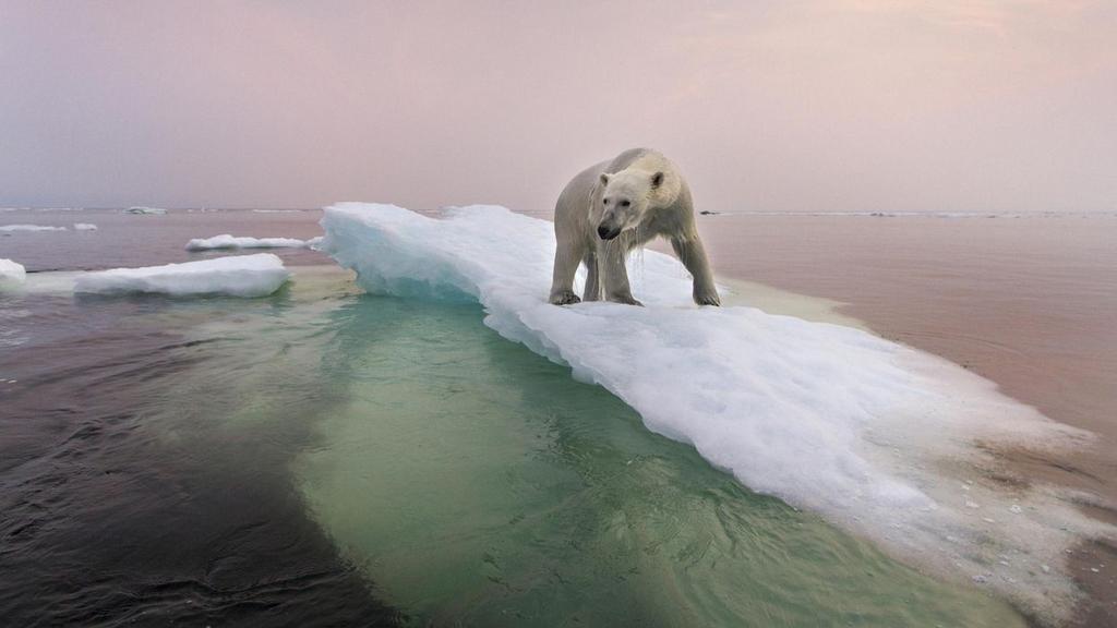 Cambio climático: se duplicó el calor que atrapa la Tierra entre 2005 y 2019