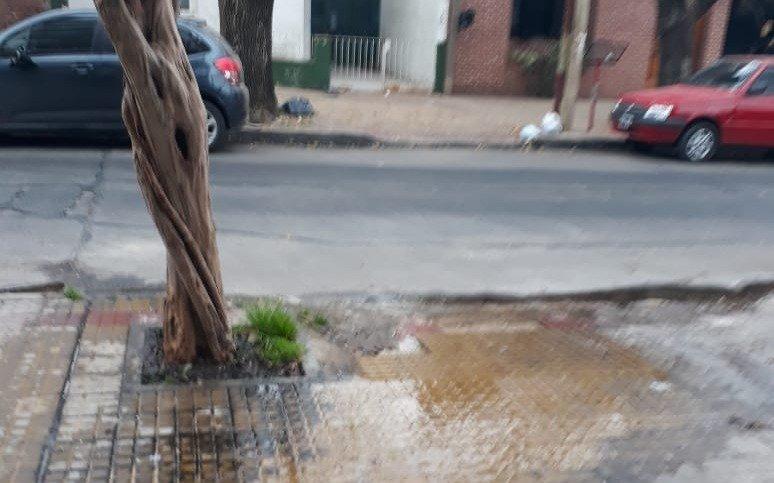 Lleva meses una pérdida de agua frente a un edificio en 40 entre 16 y 17