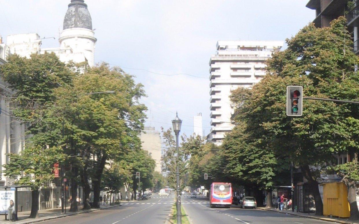 ¿Qué historia esconden los tilos de La Plata?