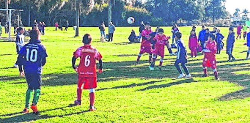 Cambaceres marca el camino en la Liga Argentina