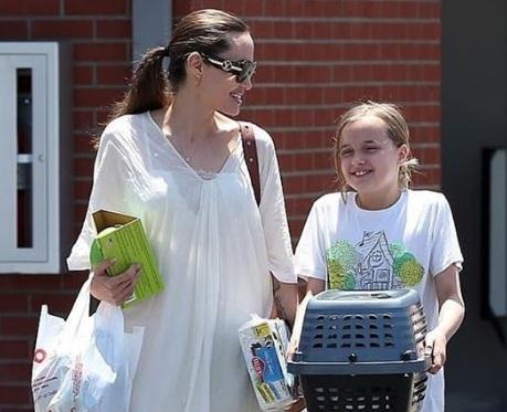Se agranda la familia de Angelina Jolie con un tierno y nuevo integrante