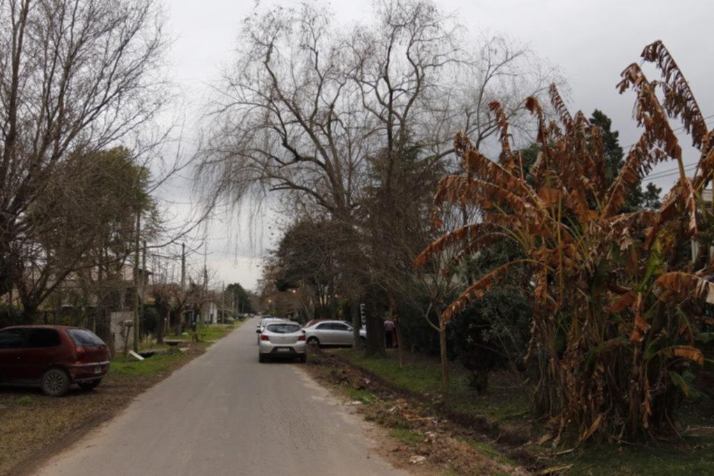 Se mudaron hace 45 días a Villa Elisa y ya tuvieron ladrones entre las visitas