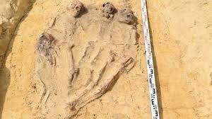 Encuentran esqueletos infantiles del siglo XVI con monedas en la boca