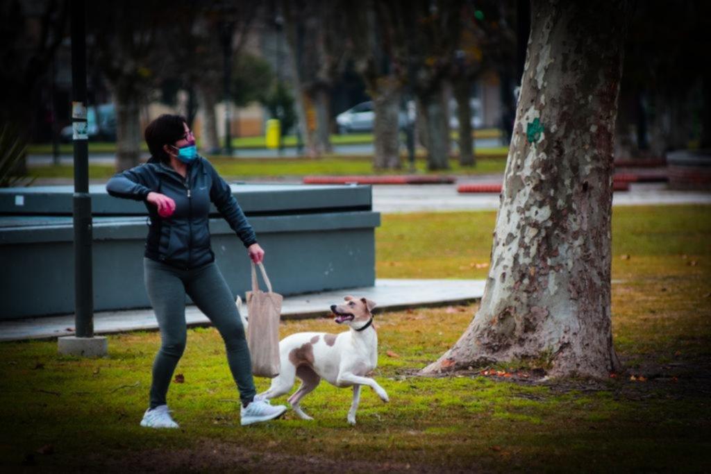 La Plata en imágenes: paseos con buena compañía