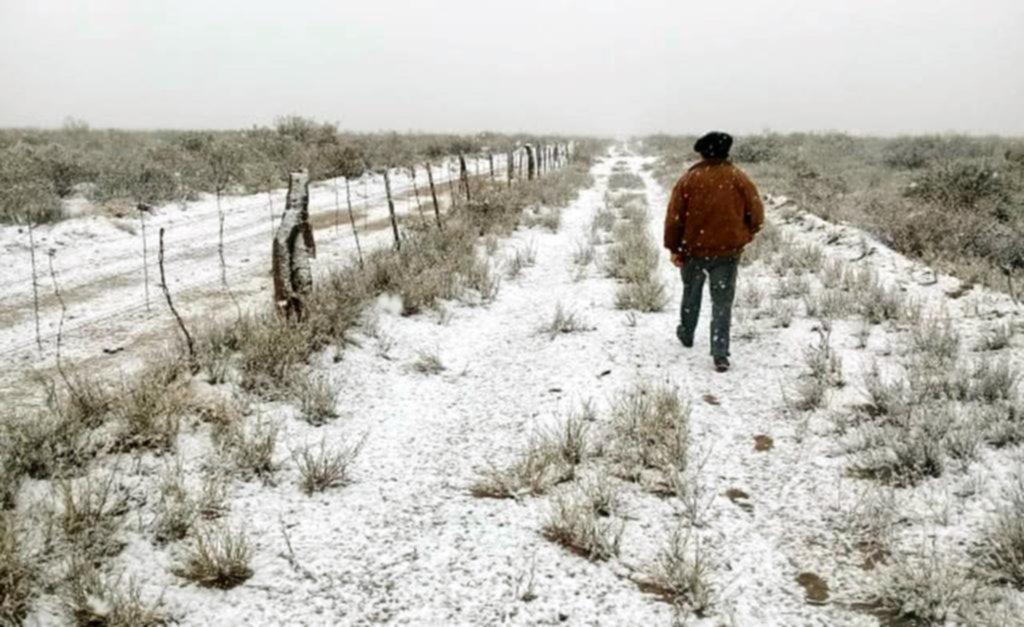 ¡Qué frío! Hizo -3,2º de térmica en La Plata, nevó en La Pampa y gran parte del país, bajo cero