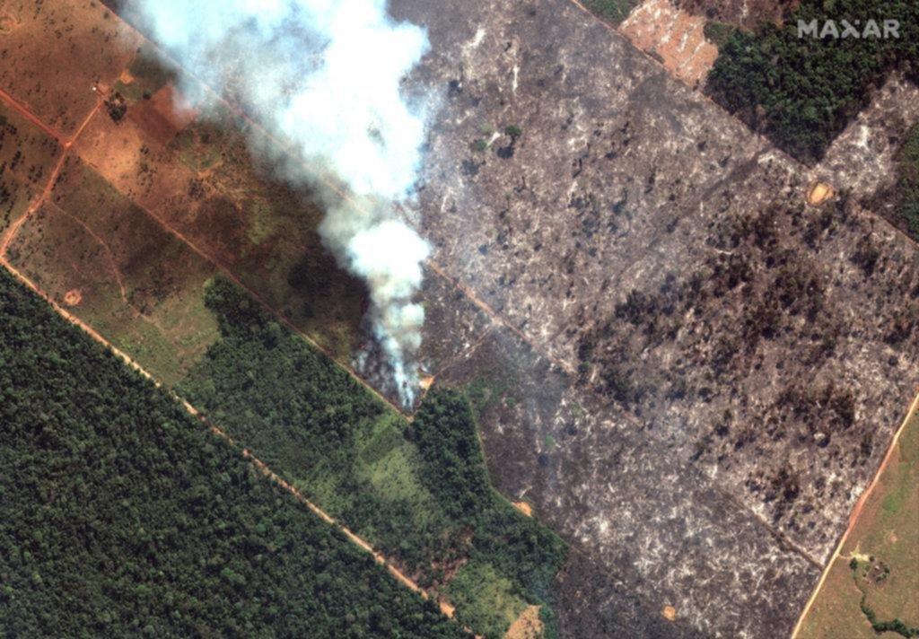 Brasil bajo presión internacional por los graves incendios en el Amazonas