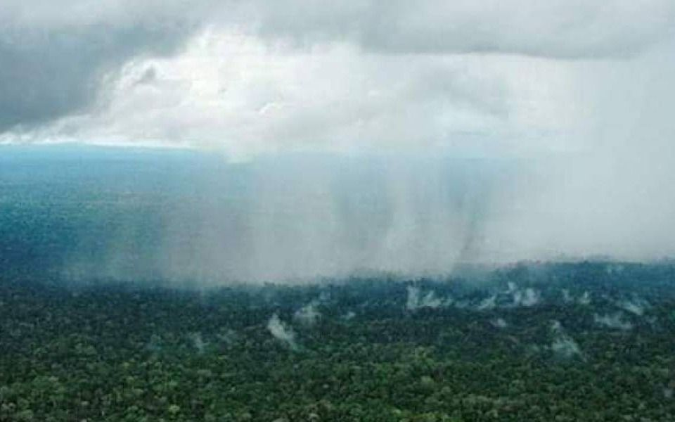 ¿Llueve en el Amazonas? La fake news que se hizo viral en las redes