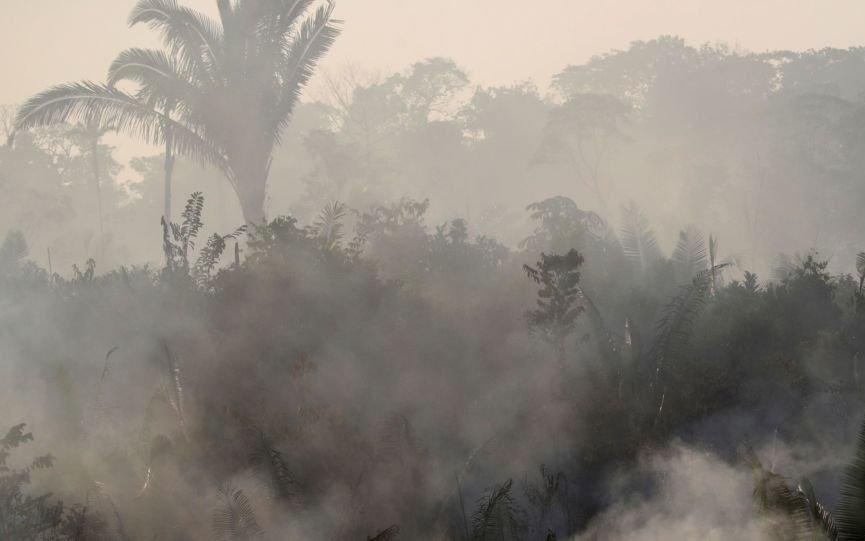 """""""Es probable"""" que llegue hasta La Plata el humo del incendio  en el Amazonas"""