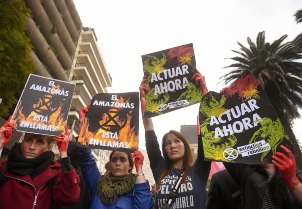 Ambientalistas se manifestaron frente a la embajada de Brasil en Retiro