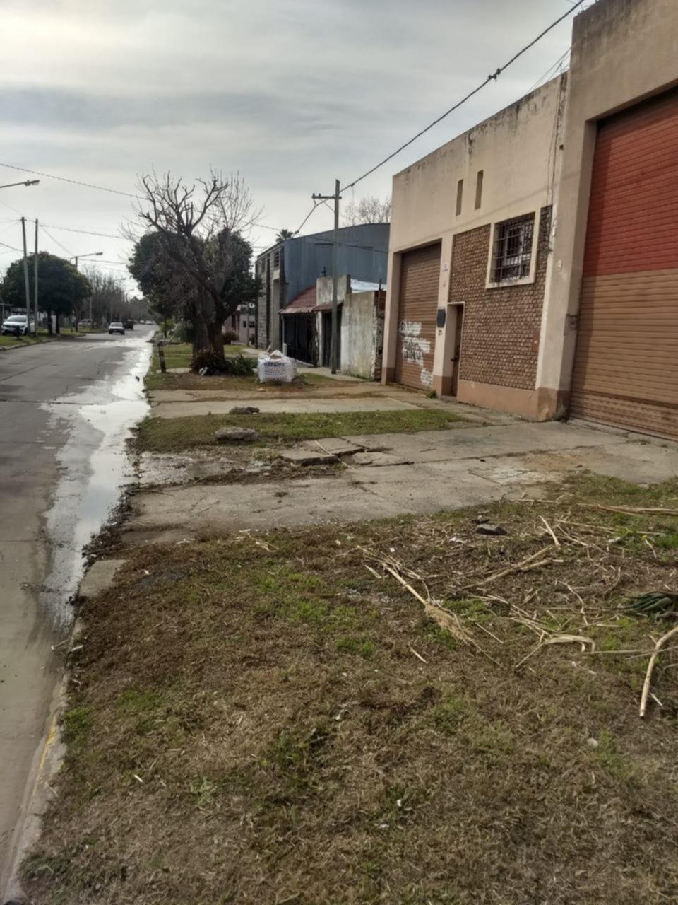 Catarata de quejas por el agua que se derrocha en la calle y afecta al servicio