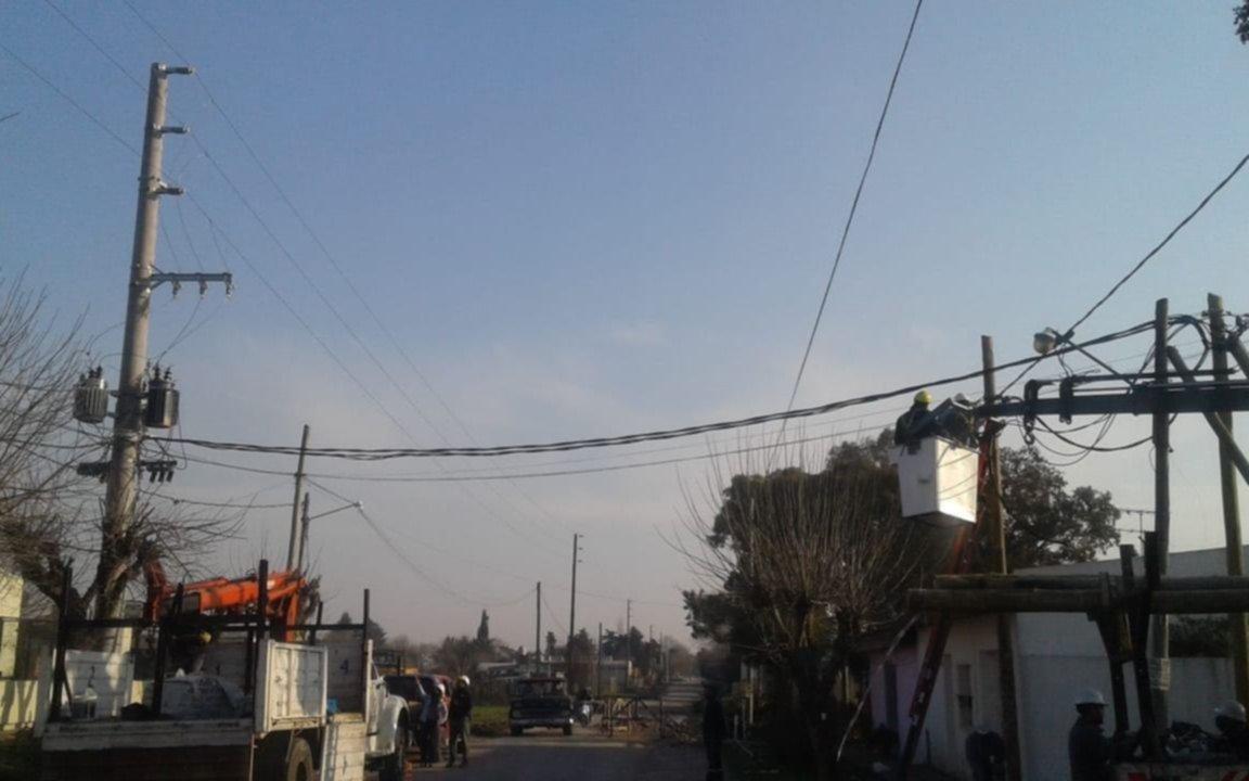 Todo un barrio sin luz en Los Hornos por un accidente durante a extracción de un árbol