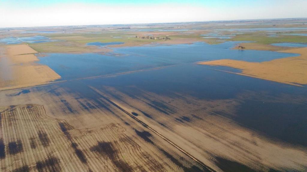 La recuperación en las zonas inundadas demandaría entre seis y nueve meses