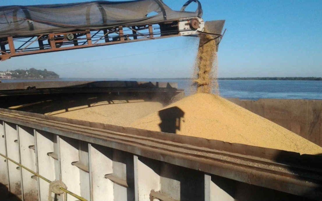 Acuerdo histórico: China comprará harina de soja a la Argentina