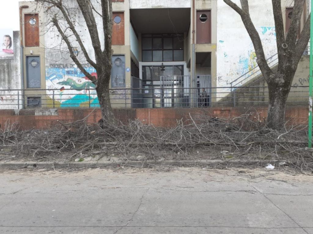 Montaña de ramas en la vereda de una escuela