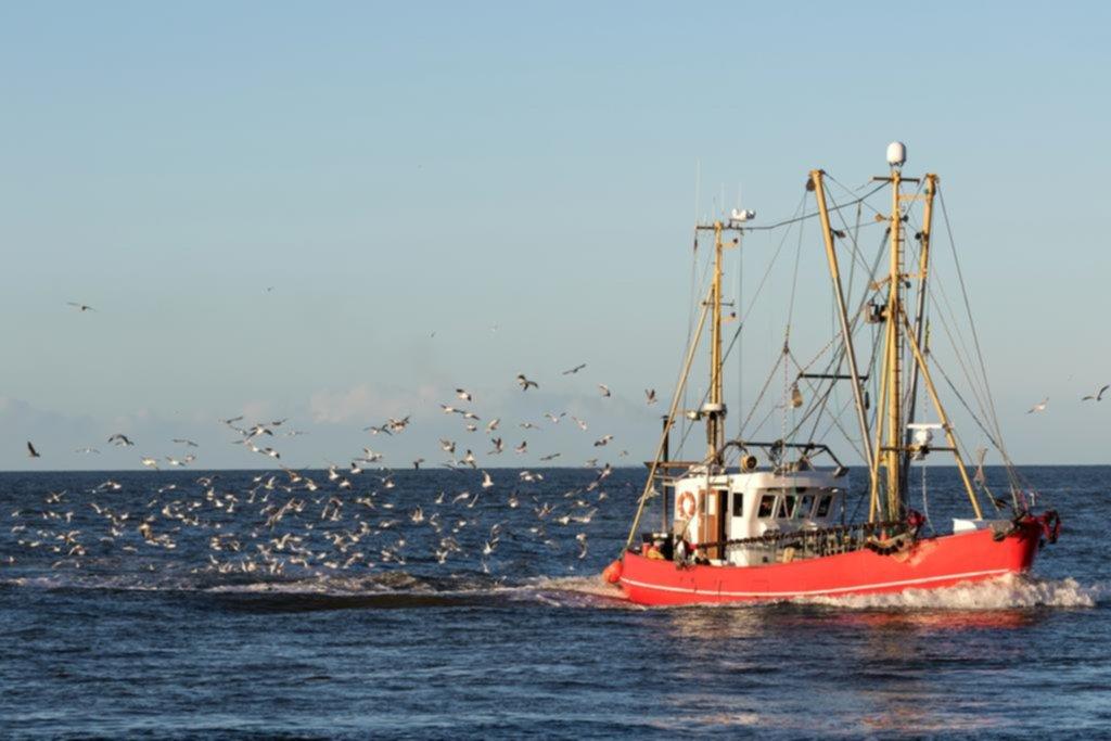 El calentamiento golpea costas cercanas y amenaza a la pesca