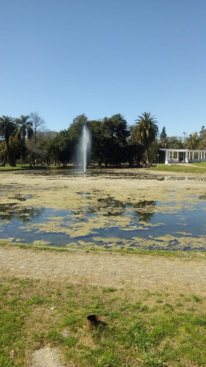 """El lago del Parque Saavedra parece """"un pantano"""""""
