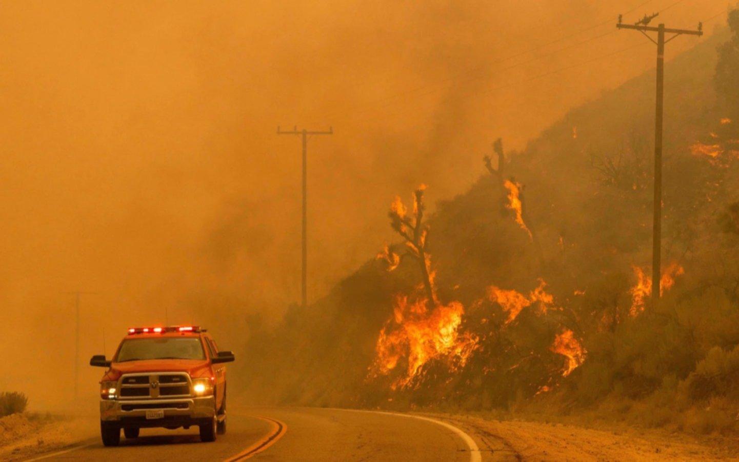 California prohibirá la venta de automóviles a gasolina pensando en el cambio climático