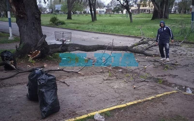 La lluvia provocó algunos trastornos en la Ciudad