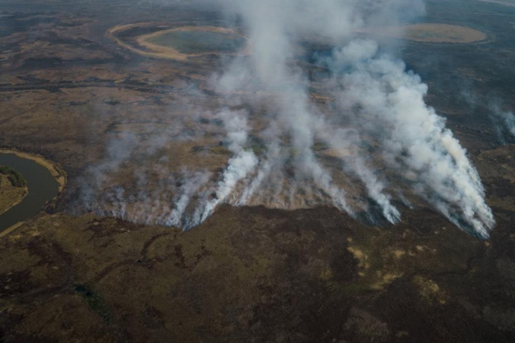 La crisis ambiental, en la obra de grandes autoras argentinas