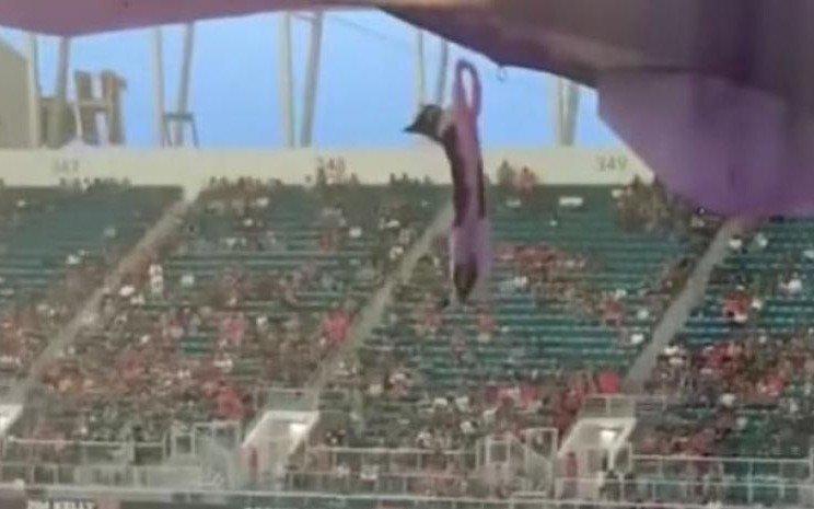¡Se paralizó el estadio! Salvan a un gato de una caída de 20 metros con la ayuda de una bandera