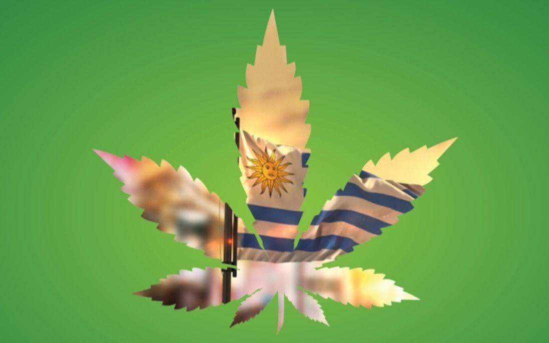 Turismo de cannabis: la nueva jugada de Uruguay para atraer turistas