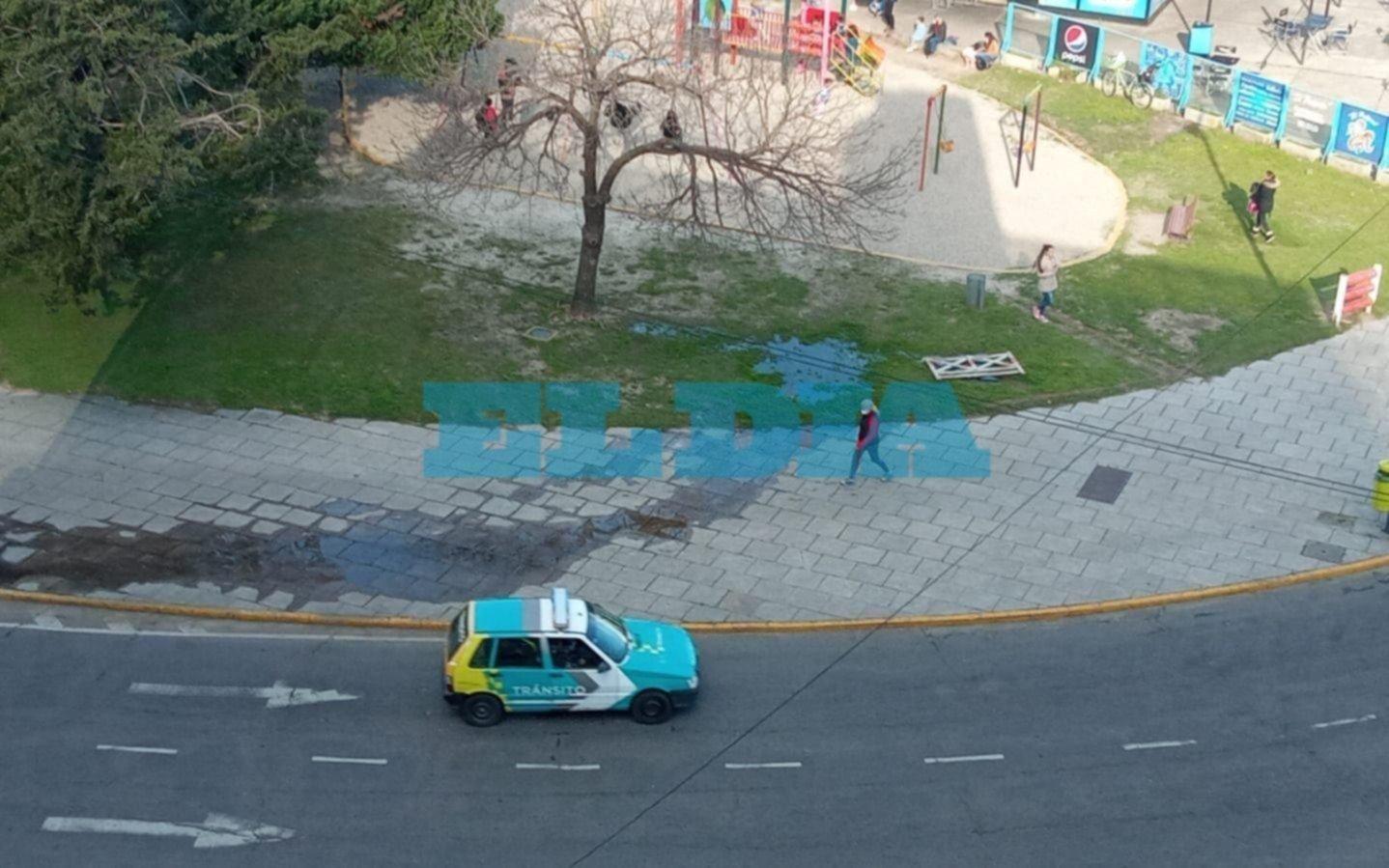 """Quejas por un """"derroche"""" de agua en Plaza Moreno"""