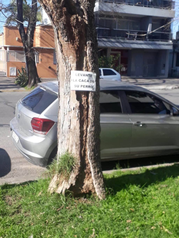 Campaña para una buena convivencia en avenida 25