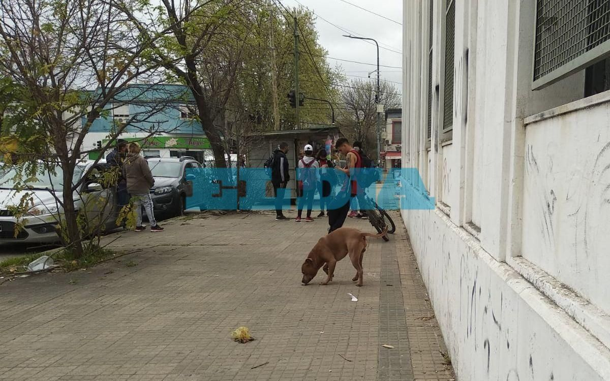 Un pitbull suelto causó susto y preocupación en la puerta de una escuela platense