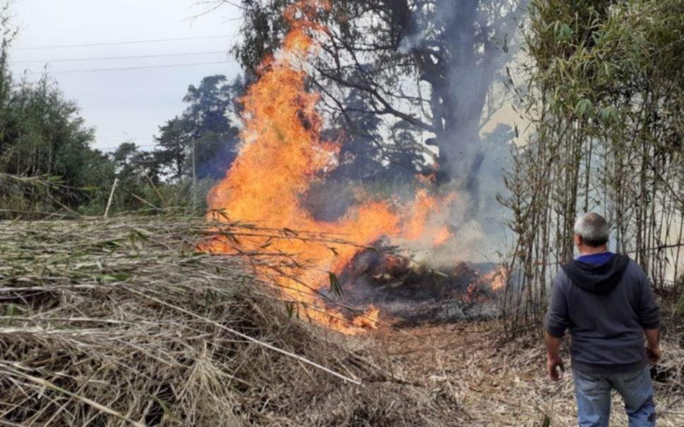 Berisso: ocho detenidos acusados de quemar un campo para ocultar un desmonte