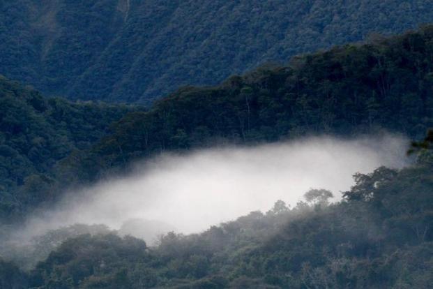 El Parque Provincial Potrero de Yala es uno de los destinos preferidos en Jujuy