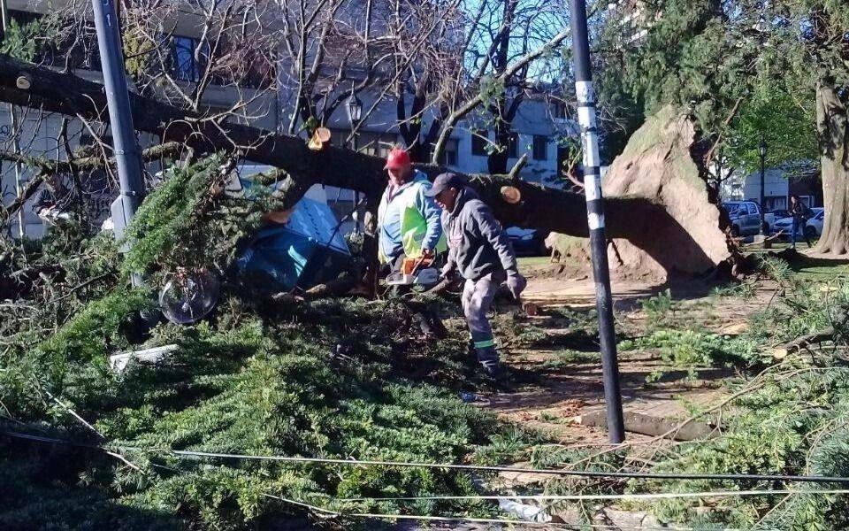 Varios barrios continúan sin luz ni agua dos días después del temporal